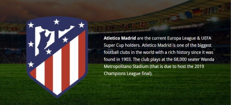 At Madrid Logo and description for camp announcement